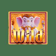 fortune-wild
